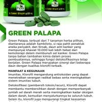 GREEN PALAPA